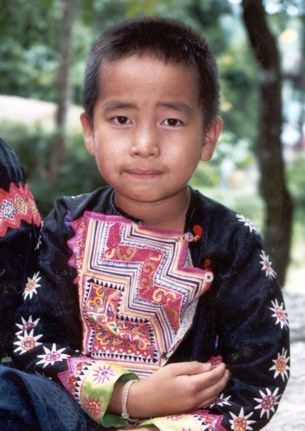 Hmong Dlex Nchab